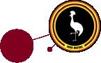 kiira motors logo