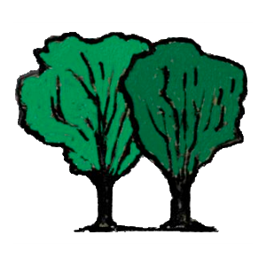 Twin Tree Business Services